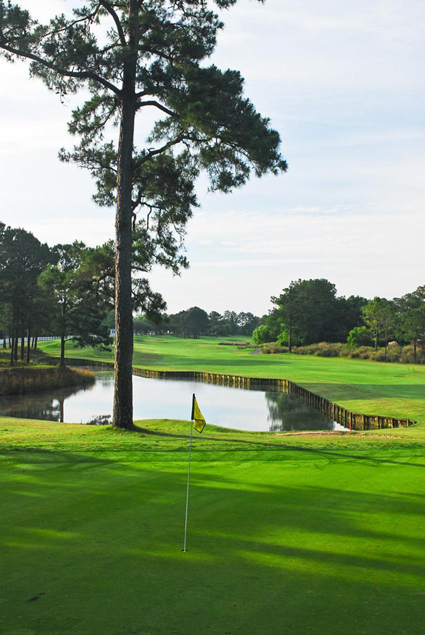 Par  Golf Courses In North Myrtle Beach Sc